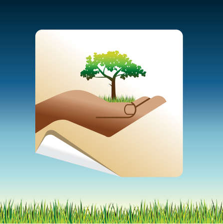 small tree: Small tree in a hand