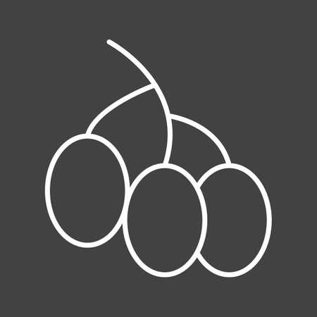 Unique Berries Vector Line Icon