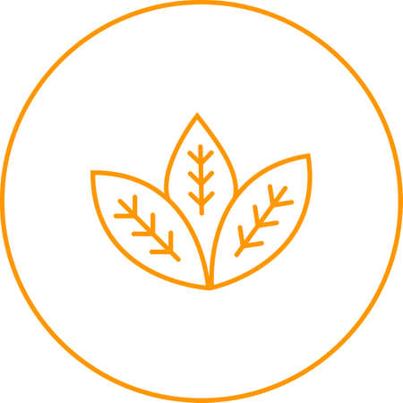 Unique Spearmint Vector Line Icon