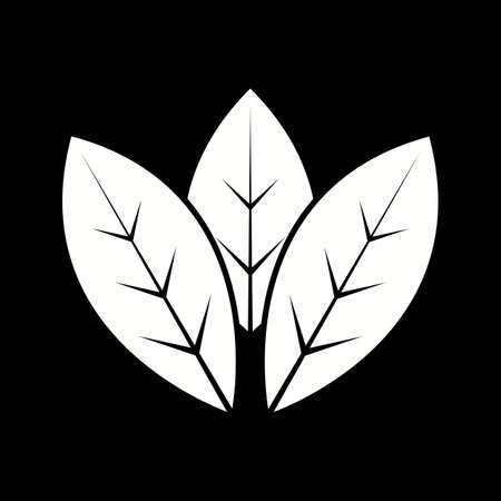 Unique Spearmint Vector Glyph Icon Illusztráció