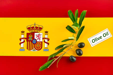 Olive branch with olives onto Spanish flag Stock Photo