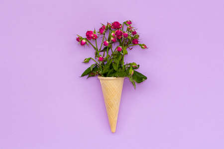 a bouquet of dried roses in a waffle cone on pink background. Top view. Flay lay.