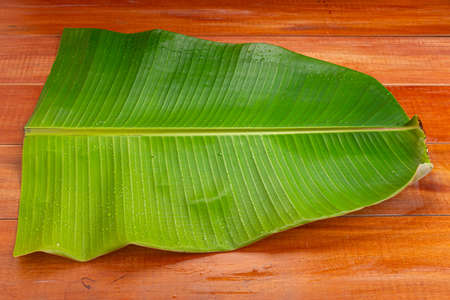 Banana leaf,fresh green banana leaf textured background which is mostly used in south india for feast as plates and making snacks items .