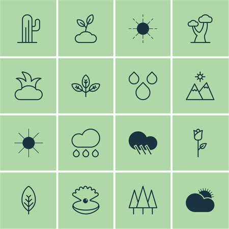 Set Of 16 Nature Icons. Includes Sun, Oak, Landscape Symbols. Beautiful Design Elements.