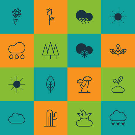 Set Of 16 Ecology Icons. Includes Snowstorm, Cloud, Sunshine And Other Symbols. Beautiful Design Elements.