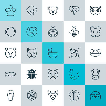 pounce: Zoology Icons Set. Collection Of Fish, Beetle, Marsupial And Other Elements. Also Includes Symbols Such As Moth, Butterfly, Web. Illustration