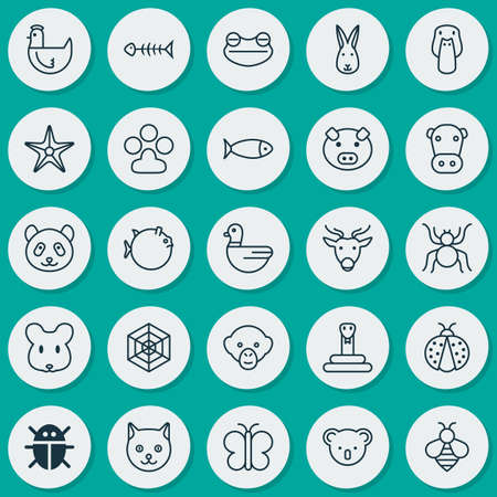 pounce: Zoology Icons Set. Collection Of Cobweb, Fish, Seafood Skeleton And Other Elements. Also Includes Symbols Such As Web, Animal, Reindeer.