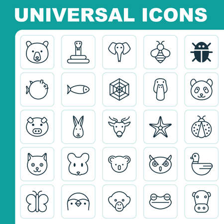 Zoology Icons Set. Collection Of Cobweb, Baboon, Bear And Other Elements. Also Includes Symbols Such As Moose, Spider, Owl.