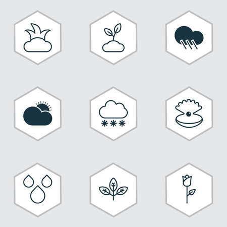 Harmony Icons Set. Collection Of Raindrop, Water Drops, Bush And Other Elements