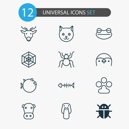 Zoo Icons Set. Collection Of Beetle, Claw Print, Spider And Other Elements