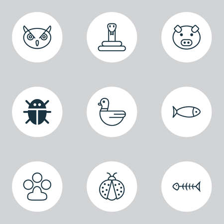 Animal Icons Set. Collection Of Ladybird, Night Fowl, Fish And Other Elements. Also Includes Symbols Such As Goose, Piglet, Duck.