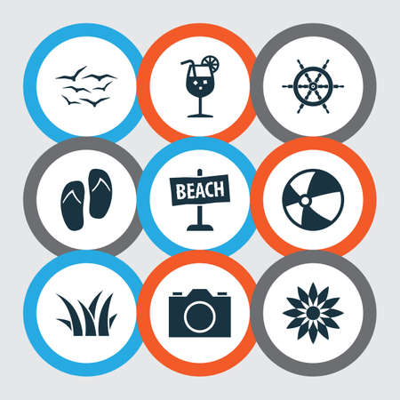 Summer Icons Set. Includes Icons Such As Board, Video, Sedge And Other.
