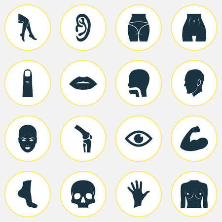 Part Icons Set With Breath, Hand, Gesture Foot   Elements. Isolated Vector Illustration Part Icons. Illustration