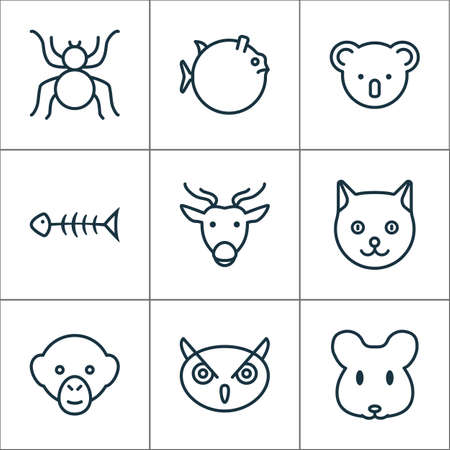 Animal Icons Set With Kitten, Baboon, Seafood Skeleton And Other Spider  Elements. Isolated Vector Illustration Animal Icons. Illustration