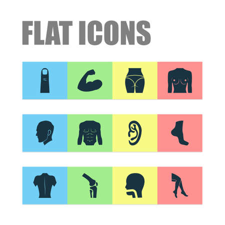 Physique icons set with leg, muscle, boob and other breath   elements. Isolated vector illustration physique icons.