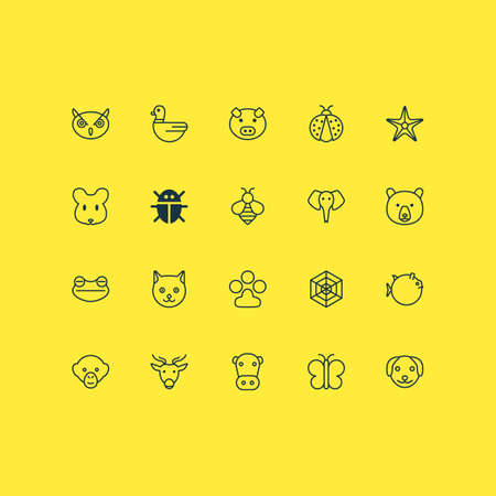 Zoology icons set with toad, grizzly, puppy and other ladybird   elements. Isolated vector illustration zoology icons.