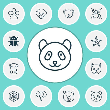 Zoo icons set with panda, arachnid, monkey bear