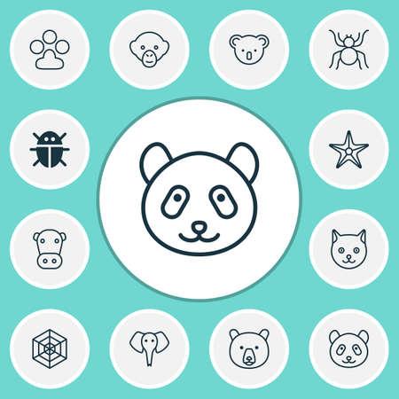 Animal icons set with panda, arachnid, monkey bear   elements. Isolated  illustration animal icons.