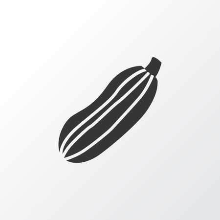 Zucchini icon symbol. Premium quality isolated squash element in trendy style.