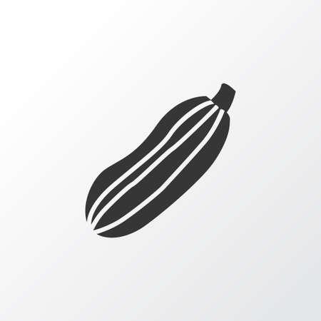 Zucchini icon symbol. Premium quality isolated squash element in trendy style.