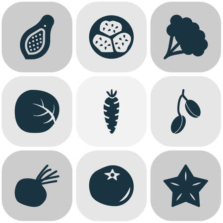 Fruit icons set with beet, papaya, barberry and other cauliflower  elements. Isolated vector illustration fruit icons. Illustration