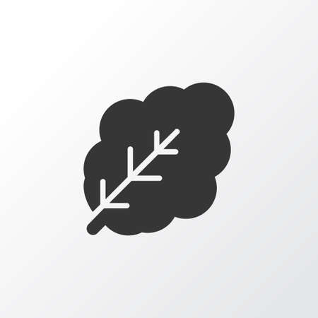 Spinach icon symbol. Premium quality isolated leaf element in trendy style. Stock Photo