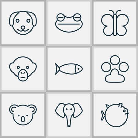 Zoology icons set with koala, frog, seafood and other moth   elements. Isolated  illustration zoology icons. Stock Photo
