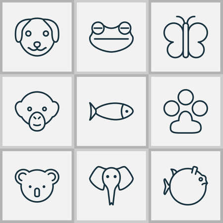 Zoology icons set with koala, frog, seafood and other moth