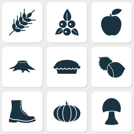 Seasonal icons set with berries, wheat, boot and other tart