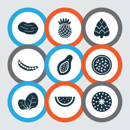 Fruit icons set with fig, marakuja, pineapple and other artichoke