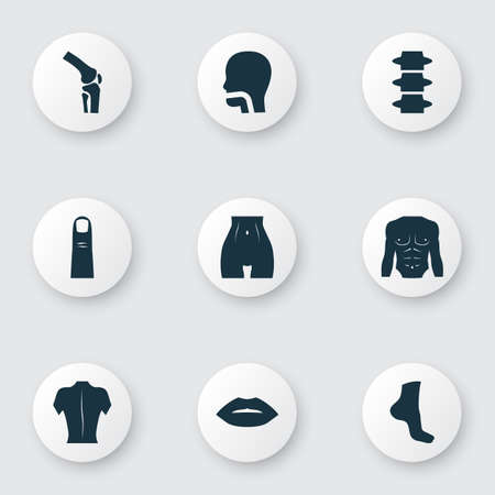 Body icons set with oral cavity, belly, back and other body   elements. Isolated vector illustration body icons.