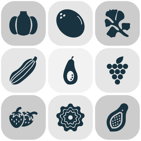 Food icons set with papaya, parsley, virgin and other avocado