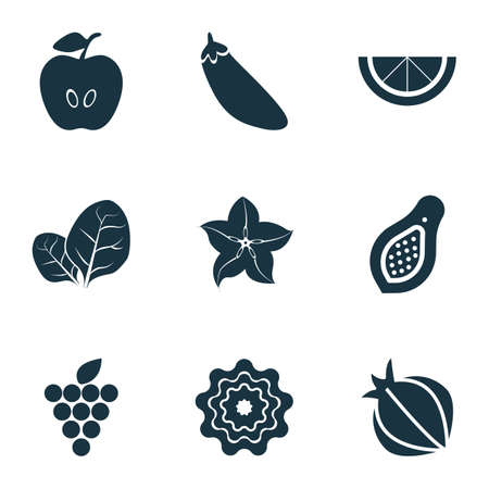 Vegetable icons set with sorrel, pattionson, clove and other herb