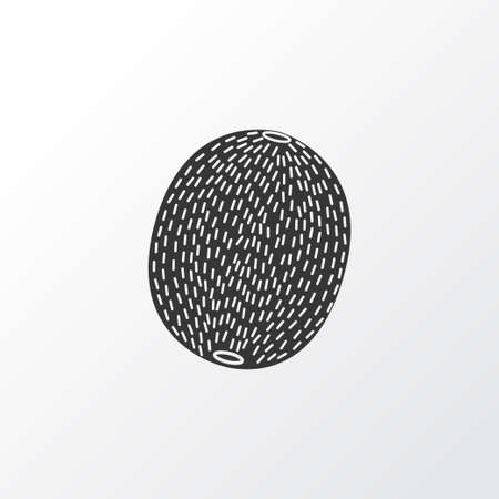 Kiwi icon symbol. Premium quality isolated nutrition element in trendy style.