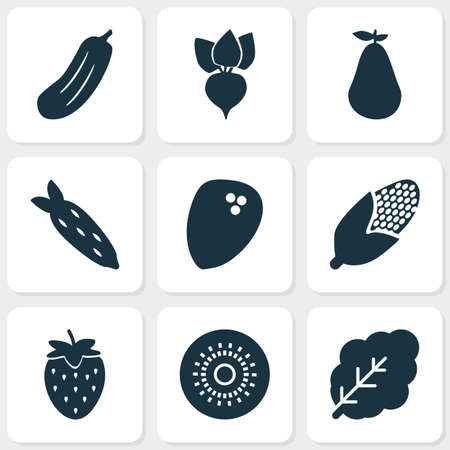 Vegetable icons set with coconut, maize, natural and other duchess elements. Isolated vector illustration vegetable icons.