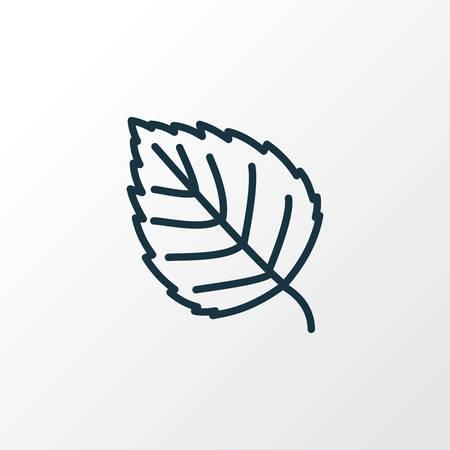 Símbolo de línea de icono de abedul. Elemento de álamo aislado de primera calidad en estilo moderno.