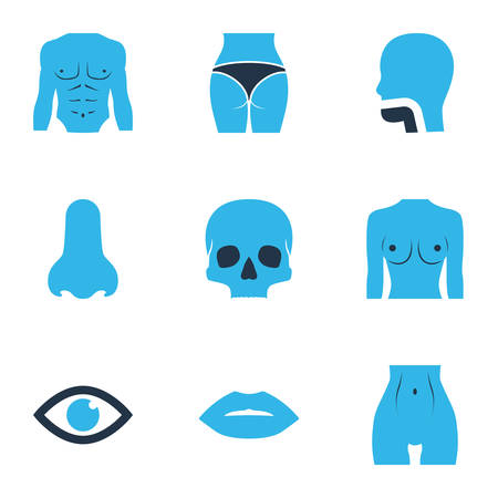 Body icons colored set with chest, skull, eye and other athletic   elements. Isolated vector illustration body icons.