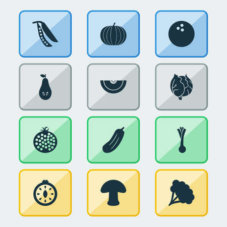 Vegetable icons set with tomato slice, leek, legume and other pomegranate  elements. Isolated vector illustration vegetable icons.