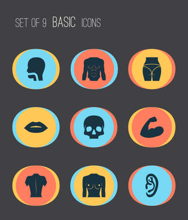 Physique icons set with butt, oral cavity, breast and other breath   elements. Isolated vector illustration physique icons. Illustration
