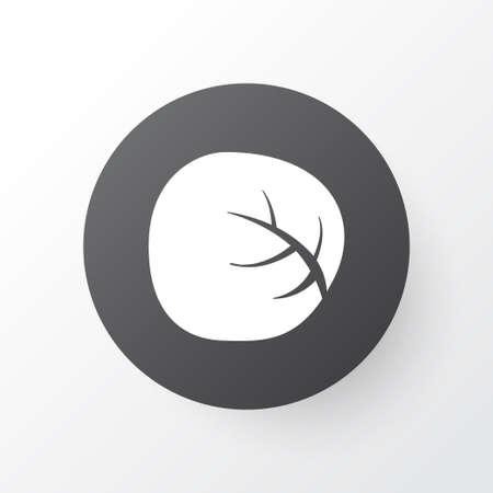 White cabbage icon symbol. Premium quality isolated cauliflower element in trendy style.