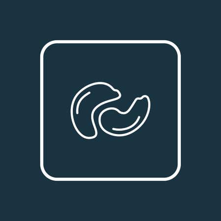 Cashew icon Stock Vector - 113075461