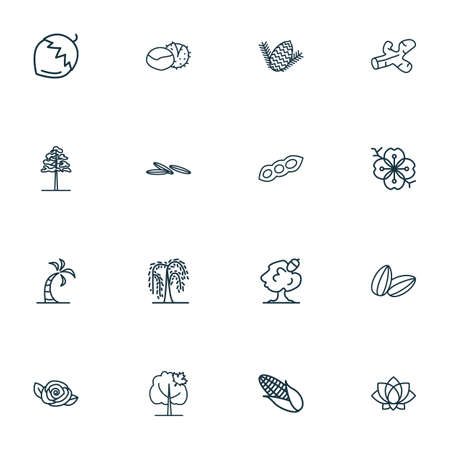 Landscape icons line style set with willow, hazel nut, chestnut and other rose elements. Isolated  illustration landscape icons.