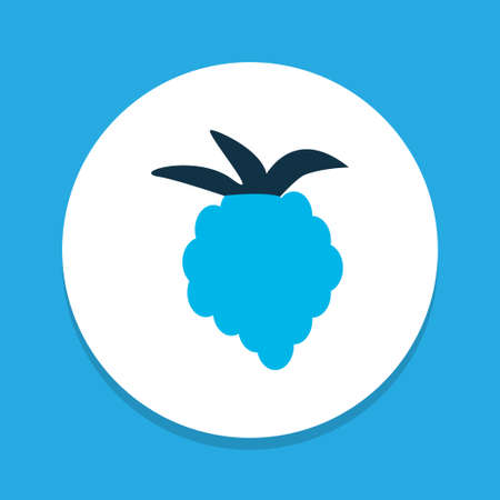 Raspberry icon colored symbol. Premium quality isolated blackberry element in trendy style.