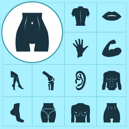Physique icons set with butt, foot, breast and other mouth   elements. Isolated vector illustration physique icons.