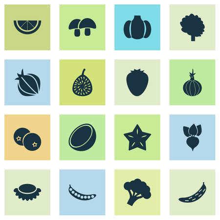 Fruit icons set with figs, root, cucumber and other broccoli