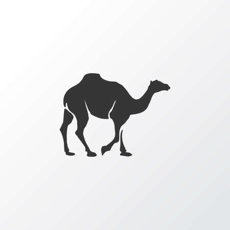 Camel icon symbol. Premium quality isolated dromedary element in trendy style. Illustration