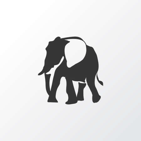 Elephant icon symbol. Premium quality isolated trunked animal element in trendy style.