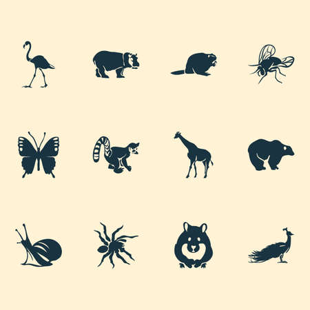 Zoo icons set with hamster, spider, butterfly and other peafowl