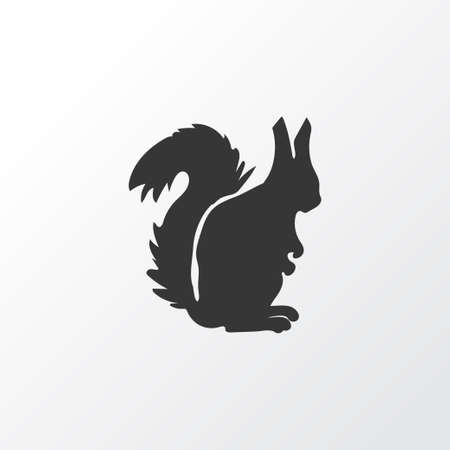 Squirrel icon symbol. Premium quality isolated chipmunk element in trendy style.