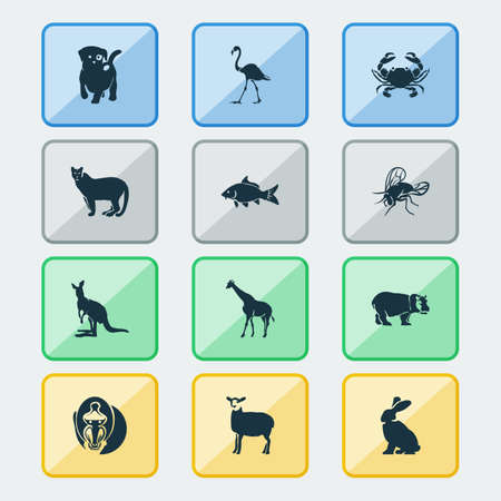 Animal icons set with fly, hippo, crab and other camelopard